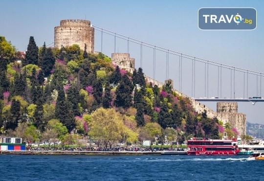 Фестивал на лалето в Истанбул на супер цена! 2 нощувки и закуски в Kumburgaz Marin Princess 5*, транспорт, ползване на сауна, парна баня и басейн - Снимка 12