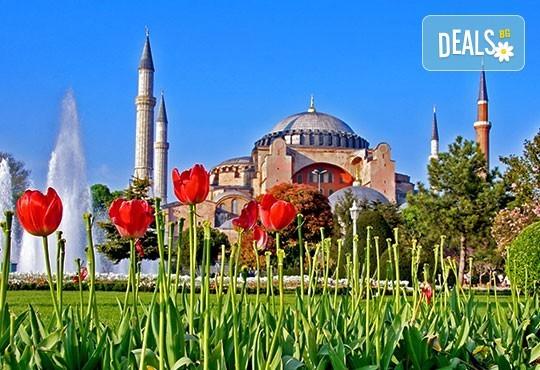 Фестивал на лалето в Истанбул през април! 2 нощувки и закуски в хотел 3*, транспорт от Плевен или София, посещение на парк Емирган - Снимка 1
