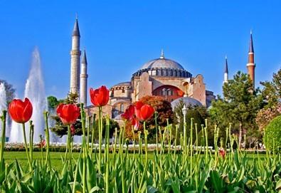 Фестивал на лалето в Истанбул през април! 2 нощувки и закуски в хотел 3*, транспорт от Плевен или София, посещение на парк Емирган - Снимка