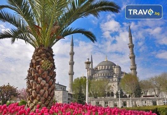 Фестивал на лалето в Истанбул през април! 2 нощувки и закуски в хотел 3*, транспорт от Плевен или София, посещение на парк Емирган - Снимка 2