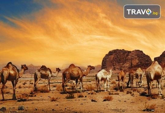 Екзотична екскурзия до Йордания през есента! 4 нощувки със закуски и вечери в хотел 3*/4*, самолетен билет и трансфери, посещение на Петра и джип сафари в пустинята Вади Рум - Снимка 7