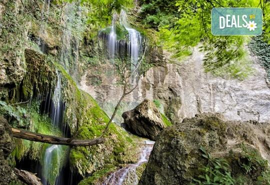 Еднодневна екскурзия на 18.07. до Деветашката пещера и Крушунските водопади с транспорт от Плевен и водач - Снимка 3