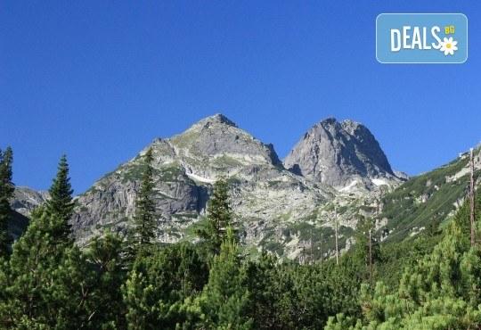 Еднодневен преход през юли или август до връх Мальовица в Рила с транспорт и водач от Поход - Снимка 1