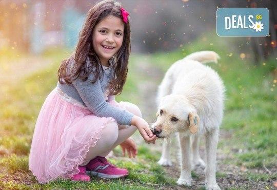 Детска или семейна фотосесия с обработка на всички кадри от ARSOV