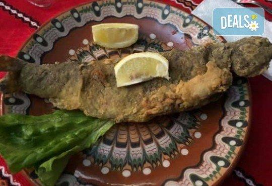 Почивка в Добринище! 1 нощувка със закуска и вечеря в къща за гости Андрееви, до минералния басейн - Снимка 20