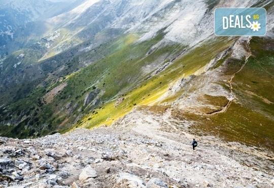 Еднодневна екскурзия през август до вр. Вихрен: транспорт и планински