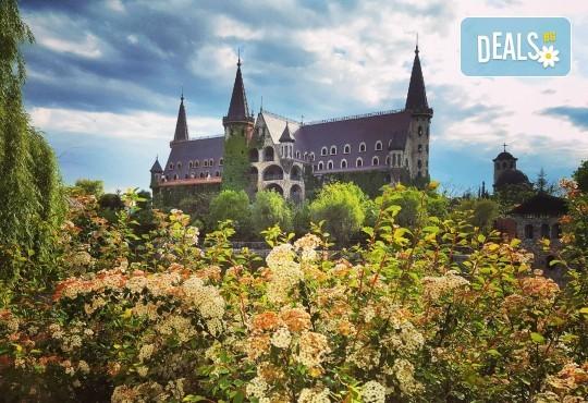 """Посещение на Замъка """"Влюбен във Вятъра"""" в Равадиново, безплатно за дете до 6.99 г. - Снимка 5"""