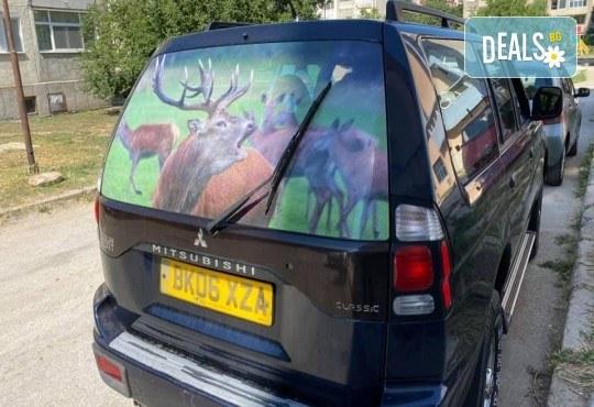 Широкоформатен печат върху PVC, Перфо фолио, Перфо фолио Ден и нощ или Винил от Магния Скантила ЕООД - Снимка 3