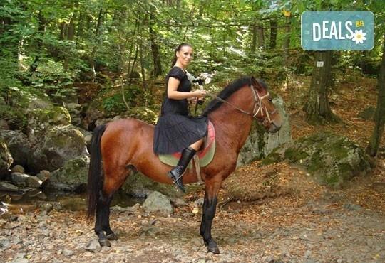 Промоционална оферта от конна база Св. Иван Рилски за конна езда на чист въздух във Владая - Снимка 2