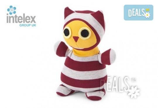 Нагряващ се Мистър Хуутъл Socky Dolls Mr Hootle от Intelex - Снимка 1