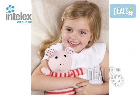 Нагряващо се Плетено Прасе Knitted Warmer Pig от Intelex - Снимка 2