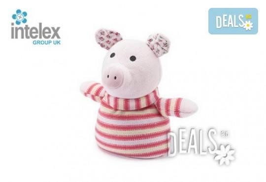 Нагряващо се Плетено Прасе Knitted Warmer Pig от Intelex - Снимка 1