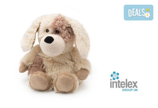 Плюшено нагряващо се Кутре Cozy Plush Puppy от Intelex - Снимка 1