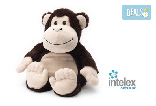 Плюшена нагряваща се Маймуна Cozy Plush Monkey от Intelex - Снимка 1