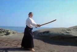 5 тренировки по айкидо, школа Тайки доджо