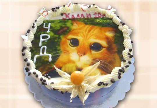 Кръгла детска торта 10 парчета с фотоснимка с любими герои или снимка по избор от Сладкарница Орхидея! - Снимка 6