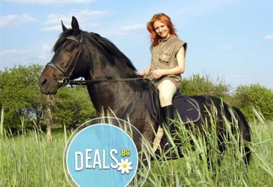 30-минутен урок по конна езда с инструктор или конна езда с водач в Конна база Драгалевци или Нова звезда! - Снимка 2