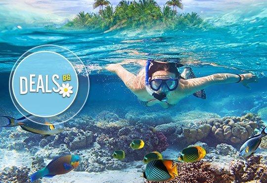 Доминиканска република през ноември! 7 нощувки All inclusive в Natura Park 5*, самолетен билет от Мадрид и трансфер - Снимка 4