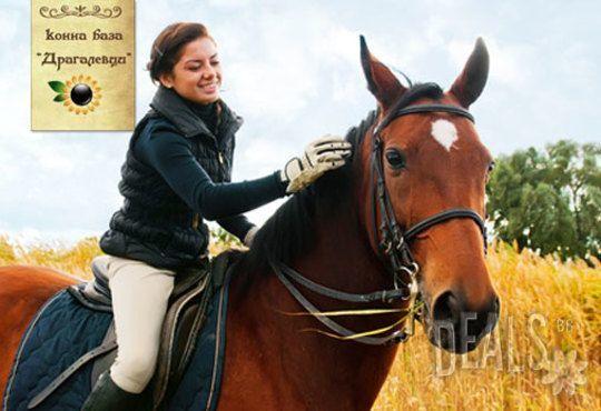 Обичате ли конете? 4 дни обучение по конна езда, общо 210 мин. и преход по избор от конна база Драгалевци - Снимка 3