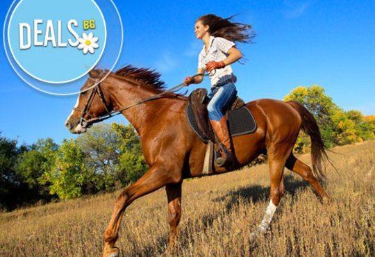 Обичате ли конете? 4 дни обучение по конна езда, общо 210 мин. и преход по избор от конна база Драгалевци - Снимка 1