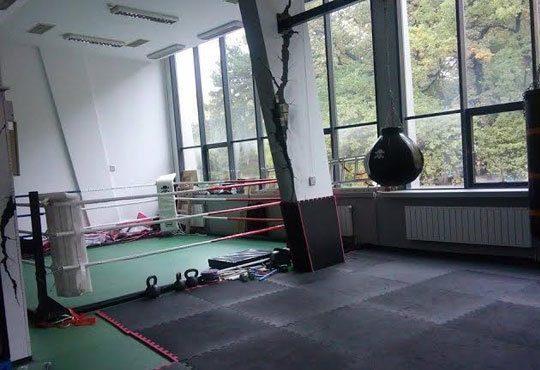 Тренирайте здраво! Пет тренировки по бокс за мъже, жени и деца на стадион Васил Левски, Боен клуб Левски София Запад - Снимка 5