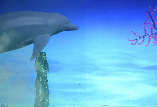 """Гледайте първата българска 3D поп-опера """"Рибарят и неговата душа"""" на 10.11. от 19ч. в зала 1 на НДК! - Снимка 8"""