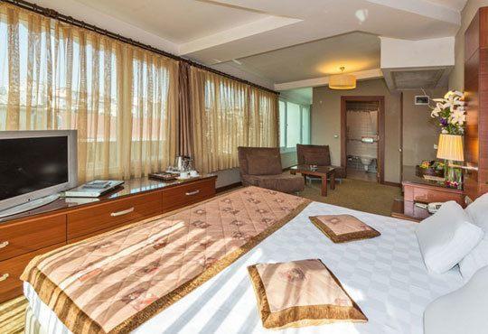 Нова година в Истанбул и Одрин! 3 нощувки със закуски във Vatan Asur Hotel 4*, транспорт и бонус посещение на МОЛ Форум! - Снимка 6