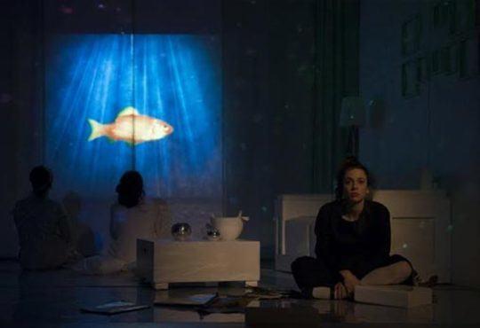 Last minute! Чиста къща от Сара Рул, постановка на Владимир Люцканов в МГТ Зад канала на 14-ти ноември - Снимка 3