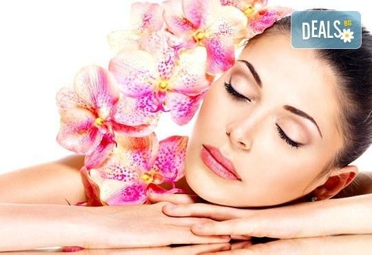 Релакс, билки и екзотика в 70 минути! Лечебен болкоуспокояващ масаж на цяло тяло с билкови масла в Wave Studio - НДК - Снимка 1