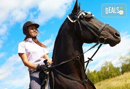 30 минути разходка и 30 минути обучение по конна езда от Езда София в конна база Хан Аспарух, Ласкар или Драгалевци! - Снимка 1