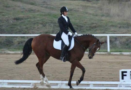30 минути разходка и 30 минути обучение по конна езда от Езда София в конна база Хан Аспарух, Ласкар или Драгалевци! - Снимка 4