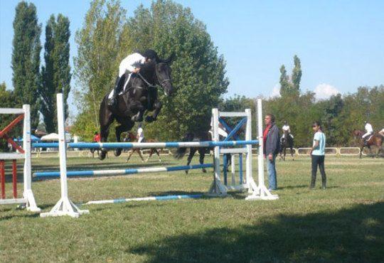 30 минути разходка и 30 минути обучение по конна езда от Езда София в конна база Хан Аспарух, Ласкар или Драгалевци! - Снимка 5