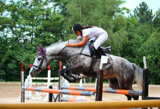 30 минути разходка и 30 минути обучение по конна езда от Езда София в конна база Хан Аспарух, Ласкар или Драгалевци! - Снимка 6