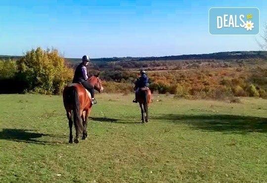 Усетете вятъра в косите си! Подарете си 60-минутна разходка с кон от Конна база Кичево - Снимка 3