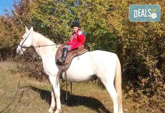 Усетете вятъра в косите си! Подарете си 60-минутна разходка с кон от Конна база Кичево - Снимка 4