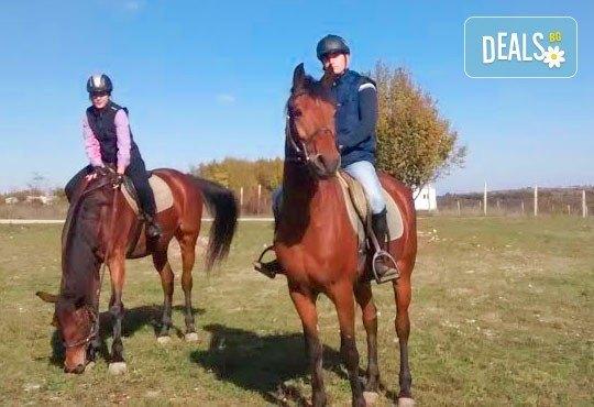 Усетете вятъра в косите си! Подарете си 60-минутна разходка с кон от Конна база Кичево - Снимка 5
