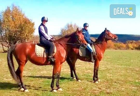 Усетете вятъра в косите си! Подарете си 60-минутна разходка с кон от Конна база Кичево - Снимка 1