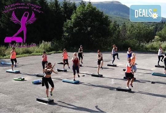 5 или 10 тренировки по избор - Pilates, Steel Tonic, Fitt Ball или Step Aerobic от Божествени тела-Аеробик спорт! - Снимка 6
