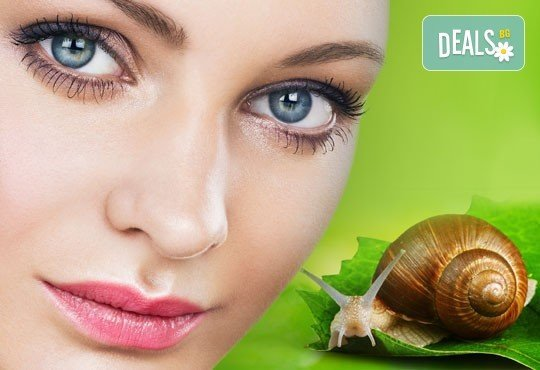 Върнете младостта! Лифтинг терапия за лице с екстракт от охлюви в Зелен салон DIELS - Снимка 1
