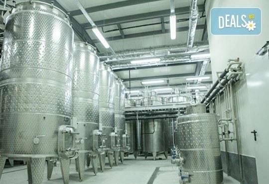 Предколедна дегустация на вино на 19.12.2015 във винарна Златен Рожен в село Рожен от агенция По света и у нас! - Снимка 4
