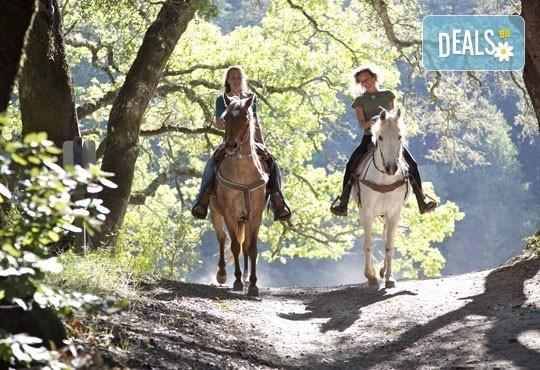 Обичате ли конете? 60 минутна езда с водач или урок по езда (тръст/галоп) с инструктор от Конна база Драгалевци! - Снимка 1