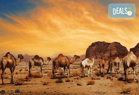 Нова година в Йордания! 8 нощувки със закуски и вечери, самолетен билет и джип тур в пустинята Вади Рам! - Снимка 4