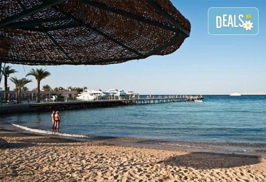 Last Minute! Нова година в Египет! 9 дни и 8 нощувки на база All Incluslive в Minamark Resort and SPA 4*, Хургада - Снимка 5