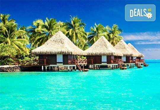 Посрещнете Нова година на Малдивите! 9 нощувки на база пълен пансион и празнична вечеря в Ranveli Village 4*, самолетен билет! - Снимка 3