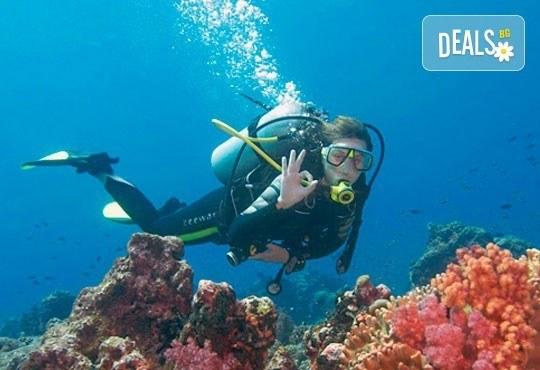 Ранни записвания за Майски празници в Dora Portofino 3*, Мармарис! 5 нощувки на база All Inclusive, възможност за транспорт! - Снимка 10