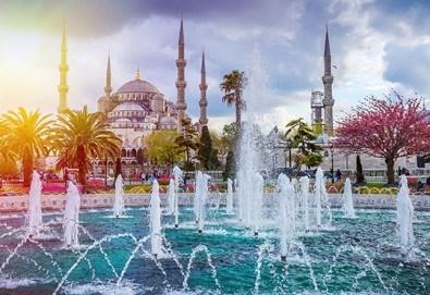 Космополитният Истанбул Ви очаква през януари или февруари! 2 нощувки със закуски, транспорт и екскурзовод от Ели Рос!