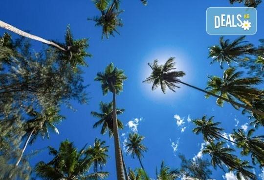 Екзотична почивка през март на Сейшелските острови: 7 нощувки и закуски в Savoy Resort and Spa 5* и самолетни билети - Снимка 6