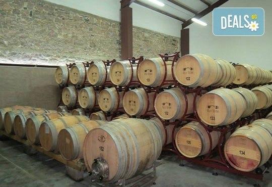 """Преживейте емоцията от създаването на вино! Екскурзия за 1 ден и дегустация на вина във Винарска изба """"Юстина"""" в с. Устина! - Снимка 2"""