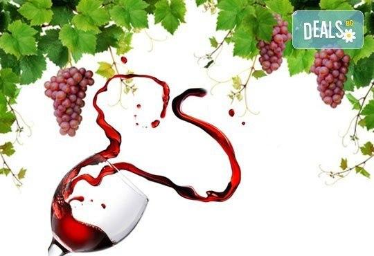 """Преживейте емоцията от създаването на вино! Екскурзия за 1 ден и дегустация на вина във Винарска изба """"Юстина"""" в с. Устина! - Снимка 1"""