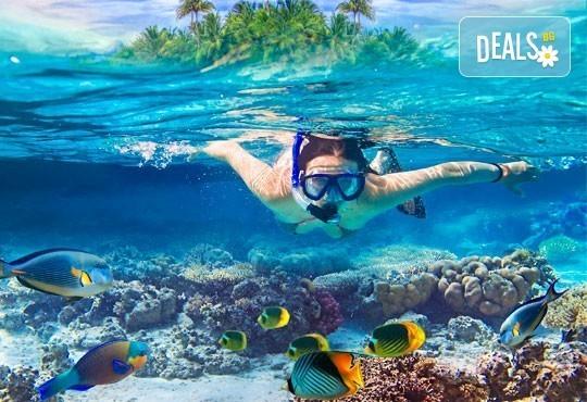 Посетете Доминиканска република - януари, февруари, май, юни! 7 нощувки, All Inclusive в Natura Park 5*, самолетен билет - Снимка 5